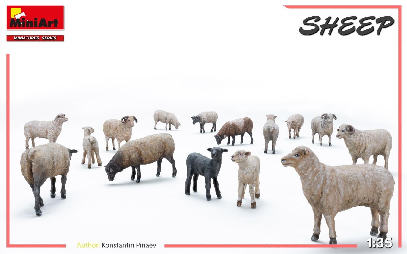 1/35 Sheep