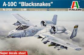 1/48 A-10 BLACKSNAKERS
